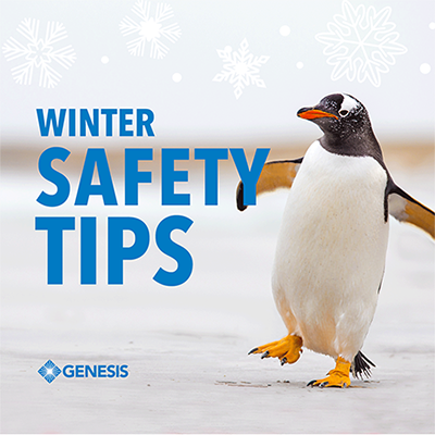 Winter Safety Tips with penguin