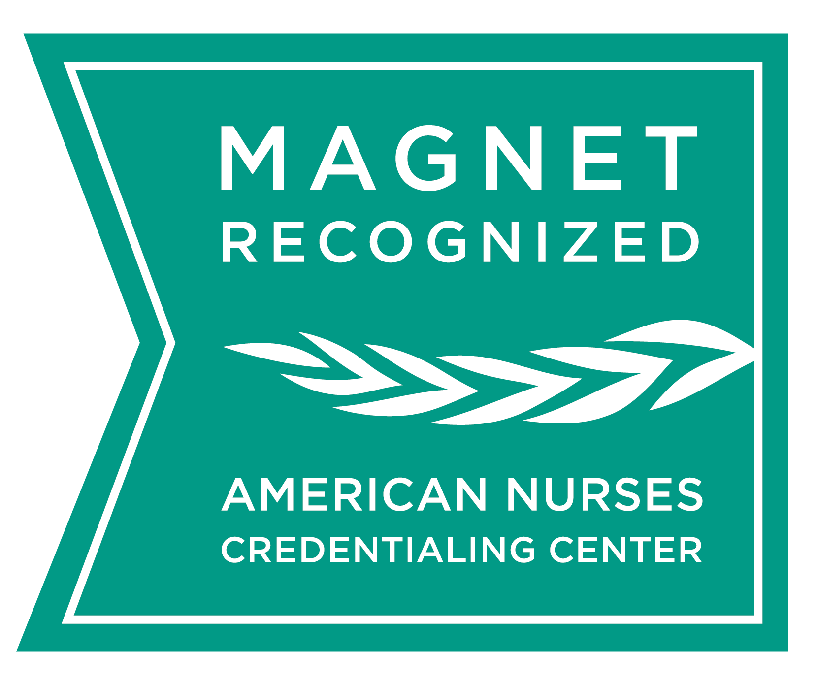 Genesis Medical Center, Davenport, receives Magnet recognition for nursing excellence.